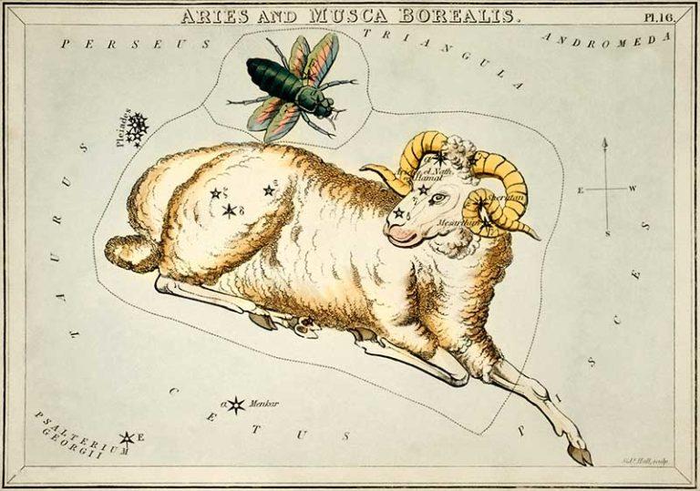 zodiaque belier