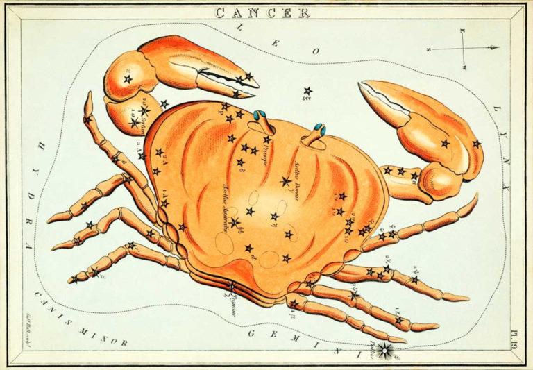 zodiaque cancer
