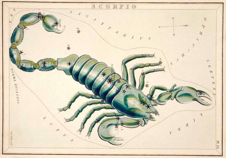 zodiaque scorpion